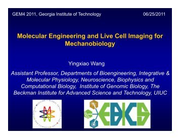 Molecular Engineering and Live Cell Imaging for Mechanobiology
