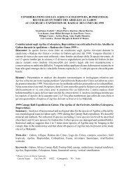 considrations sur les agrilus (coleoptera, buprestidae) - site ...