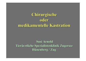 Chirurgische oder medikamentelle Kastration - Animalreproduction