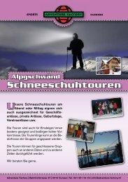 Link Flyer - Adventure Factory