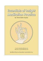 Essentials of Insight Meditation Practice - A Pragmatic - BuddhaNet