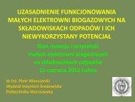 3_Prezentacja dr Piotr Manczarski_Lubna_11-06-2013.pdf