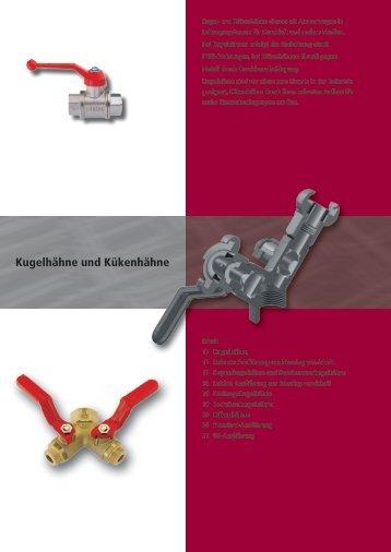 Kugel- und Kükenhähne.pdf