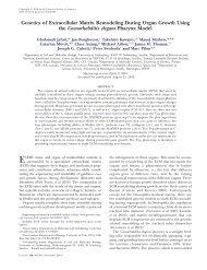 Genetics of Extracellular Matrix Remodeling During Organ Growth ...