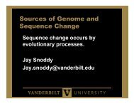 Sources of Genome and Sequence Change