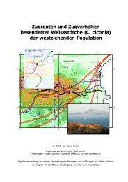 Zugrouten und Zugverhalten besenderter ... - Storch-Schweiz