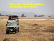 Kenya and Tanzania safari packages