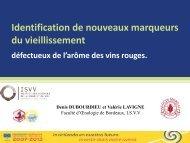 Diapositive 1 - Projet Vinaromas