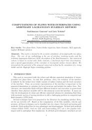 computations of flows with interfaces using arbitrary ... - Fyper