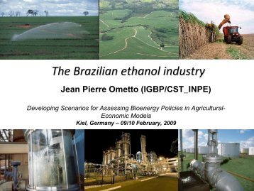 The Brazilian ethanol industry