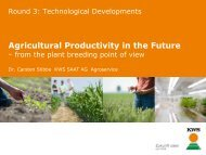 Agricultural Productivity in the Future