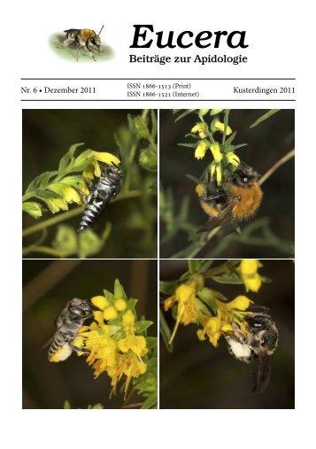 herunterladen - Wildbienen