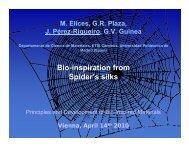 Bio-inspiration from Spider's silks
