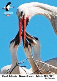 Storch Schweiz · Cigogne Suisse Bulletin 2010 / 2011 Nr. / No 40