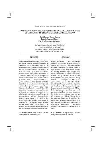 versión extensa PDF (2395 Kb) - Instituto Politécnico Nacional