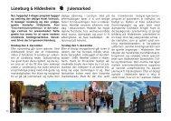 Lüneburg & Hildesheim Julemarked - Tigerrejser