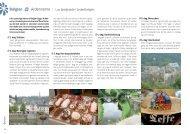 YBelgien Y Ardennerne - Tigerrejser