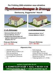 Prospekt - A. Schnetzler AG
