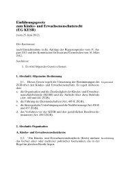 Einführungsgesetz zum Kindes- und Erwachsenenschutzrecht - Kokes
