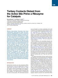 Tertiary Contacts Distant from the Active Site Prime a Ribozyme for ...