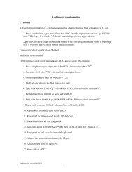 Arabidopsis Transformation I. Protocol