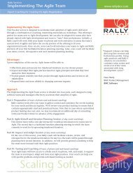 Implementing The Agile Team - Rally Software
