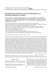 Stratification and diel activity of arthropods in a lowland rainforest in ...