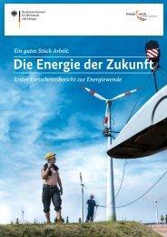 fortschrittsbericht,property=pdf,bereich=bmwi2012,sprache=de,rwb=true