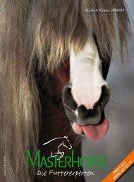 Tipp - Masterhorse GmbH