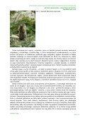 Typ siedliska przyrodniczego - Page 2