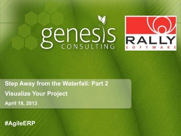 Visualize Your Project Webinar - Rally Software