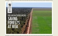 living_forests_report_chapter_5___saving_forests_at_risk