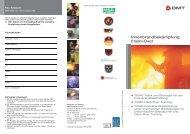 FlashOver_und_Innenbrand - DinA4 Lang x3 11 - Fire-Circle