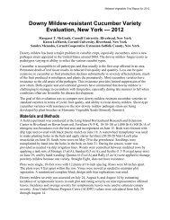 Downy Mildew-resistant Cucumber Variety Evaluation, New York ...