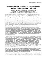 Powdery Mildew Resistant Butternut Squash Variety Evaluation ...