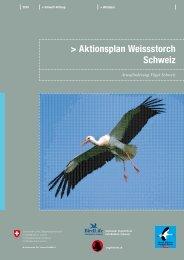 Aktionsplan Weissstorch Schweiz - Bundesamt für Umwelt - admin.ch