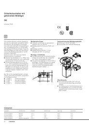 Sicherheitsschalter mit getrenntem Betätiger SKI