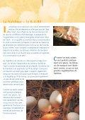 L'oeuf suisse a un plus… - GalloSuisse - Page 7