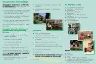 Präventiv und Gesundheitssport 2008 - Holsing Vital