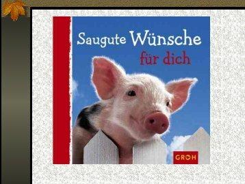 Schwein - Alles-Internet