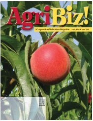 SC Agricultural Education Magazine April, May & June 2005
