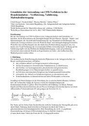 Grundsätze der Anwendung von CFD-Verfahren in der ...
