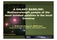 A GALAXY BASELINE - AMIGA : Analysis of the interstellar Medium ...