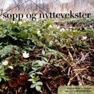 Nr 1 - 2006 i sin helhet - Norges sopp- og nyttevekstforbund