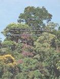 target 1 - Reserva da Biosfera da Mata Atlântica - Page 2