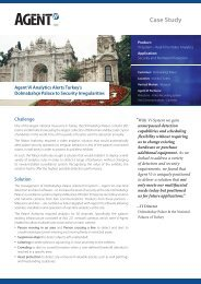 Case Study - Dolmabahce Palace - Agent Vi