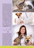 Hepa-Pet Plus unikum kicsit másként - VITAMED - Page 2