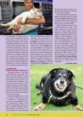 Hepa-Pet Plus unikum kicsit másként - VITAMED - Page 3