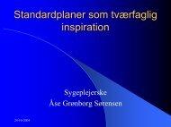 Standardplaner som tværfaglig inspiration - EPJ-Observatoriet