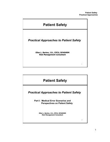 Perspectives on Patient Safety and Strategies for Error Reduction